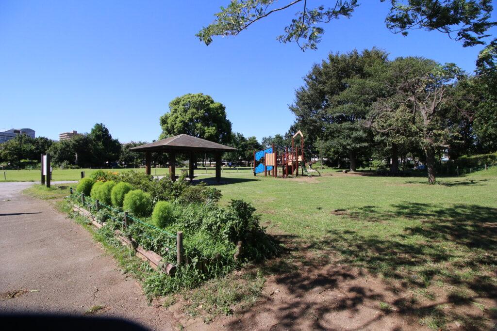 トンボ公園